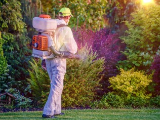 man spraying pest control substance in yard