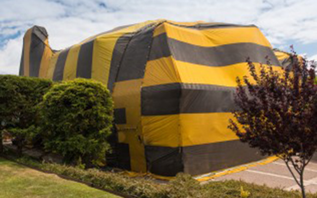 tent covering a home for termite fumigation